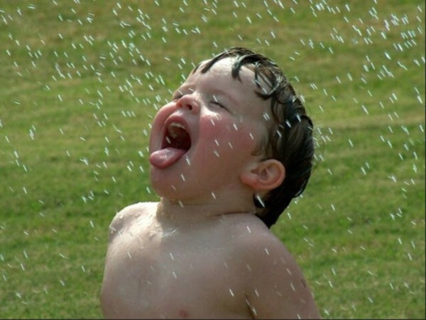 This Kid is apparently has Free Will and can choose to get wet in the rain. He can also choose to remain under a shade and keep dry. This ability to choose is operated by an external contingency called rain. Does man have the natural ability to make choices in the face of all types of external contingencies. Plato held that actions are determined by the extent of a person's understanding, or reasoning.