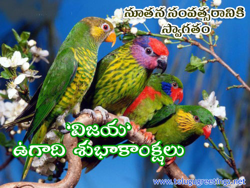 VIJAYA - TELUGU NEW YEAR 2013 - UGADI - GREETINGS: The Celebration of Spring Season.