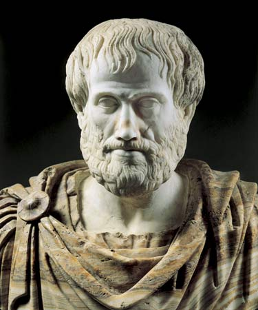 WholeDude - WholeDesigner - Photoreception: Aristotle, 384-322 B.C. Greek philosopher and Father of Science thought that plants grow by obtaining all the components from the soil. For several centuries this view remained unopposed.