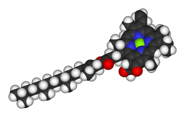 WholeDude-WholeDesigner-Chlorophyll: Three-dimensional view of Chlorophyll molecule.