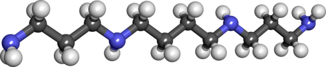 WholeDude - WholeDesigner - Phytochemistry:  This amino compound was first found in human semen sevral centuries ago. It is a basic substance associated with Nucleic Acids such as DNA and RNA, and cell membranes. It is found in nearly all animal, and plant cells. Its presence imparts smell and flavor to human Semen.