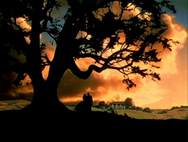 GONE WITH THE BOOM:  THE MOVIE GONE WITH THE WIND IS DAVID O. SELZNICK'S ADAPTATION OF MARGARET MITCHELL'S SWEEPING CIVIL WAR ROMANCE AND THE STORY WAS SET IN GEORGIA'S RURAL COUNTY.