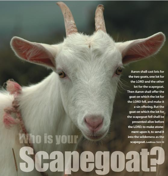 WHOLE TEAM - WHOLE LABOR - SCAPEGOAT TRADITION: SCAPEGOAT - ESCAPE GOAT IS A BIBLICAL TRADITION THAT AIMS AT REMOVAL AND DISPOSAL OF BLAME AND SIN FROM A GROUP OF PEOPLE TO PRESERVE THEIR HAPINESS AND WELL-BEING BY SAVING THEM FROM PUNISHMENT OR RETALIATION.