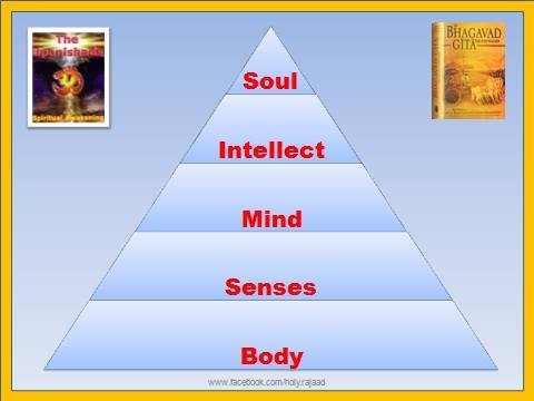 SPIRITUALITY SCIENCE - THE KNOWER - THE KNOWING SELF : INDIAN TRADITION AND OTHER TRADITIONS OF WORLD DO NOT DESCRIBE THE PRECISE ANATOMICAL LOCATION OF SPIRIT, SOUL, OR ATMAN. THIS IMAGE DESCRIBES THE HIERARCHAL RELATIONSHIPS THAT MANAGE MAN'S MENTAL FUNCTIONS.