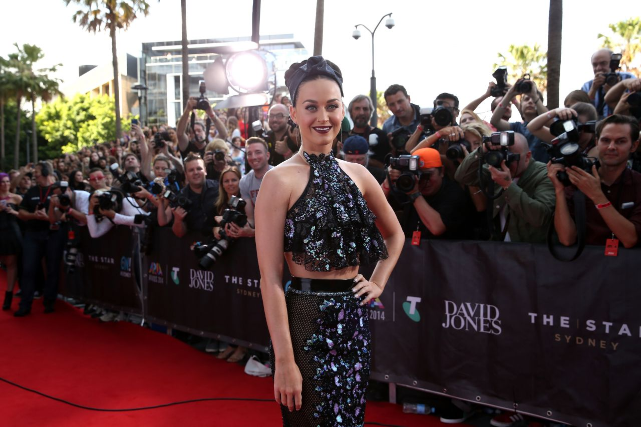 WHOLE TEAM - WHOLE COOKIE - WHOLE CHALLENGE : WHOLE TEAM MEMBERS WHO ACCEPT THIS WHOLE CHALLENGE ARE INVITED TO MAKE A WHOLE DISCOVERY OF THE HIDDEN COOKIES IN THIS PHOTO IMAGE OF KATY PERRY ON THE RED CARPET AT ARIA MUSIC AWARDS FUNCTION HELD IN SYDNEY, AUSTRALIA ON WEDNESDAY, NOVEMBER 26, 2014.