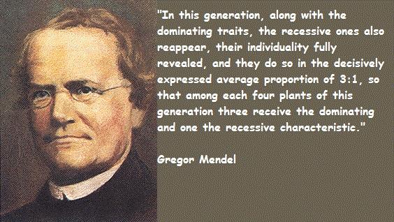 MENDEL'S  LAWS  OF  INHERITANCE