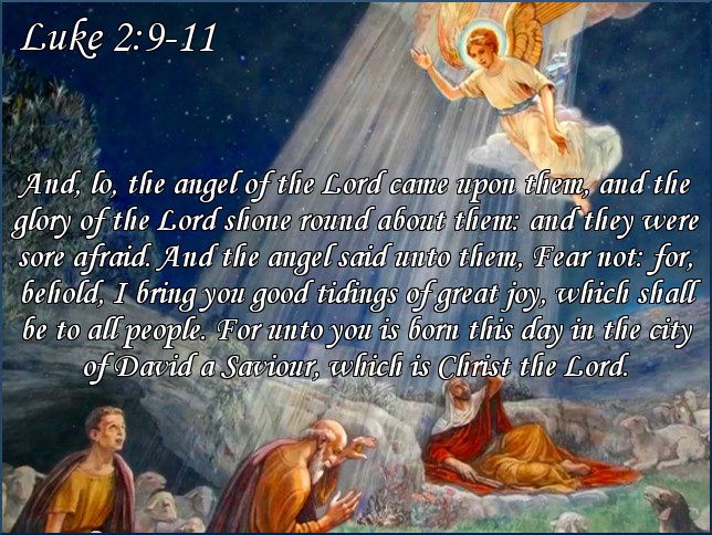 WHOLE  TEAM -  WHOLE  MESSENGER  -  WHOLE  ANGEL :