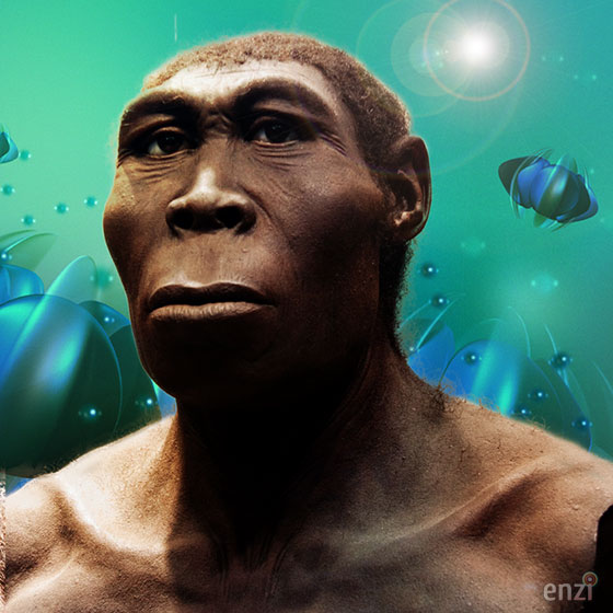 MENDEL'S  LAWS  OF  INHERITANCE  VS  HUMAN  EVOLUTION  :  HOMO  ERGASTER  IS  RELATED  TO  HOMO  ERECTUS  SPECIES  THAT  LIVED  IN  EASTERN  AND  SOUTHERN  AFRICA  FROM  ABOUT 1.89  MILLION  YEARS  AGO .