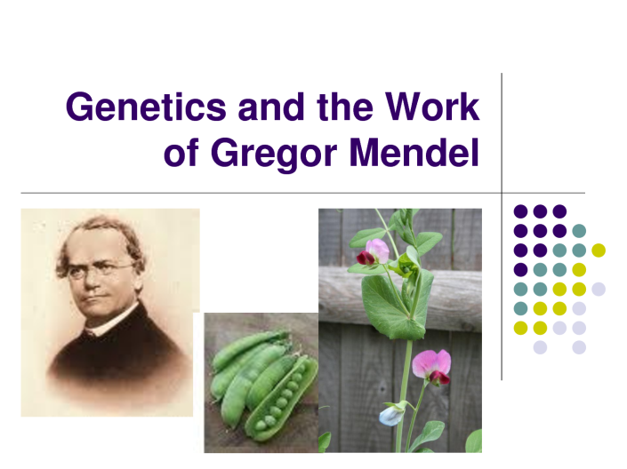MENDEL'S  LAWS  OF  INHERITANCE  VS  HUMAN  EVOLUTION  : IT  WILL  BE  IMPORTANT  TO  NOTE  THAT  ACQUIRED  CHARACTERISTICS  ARE  NOT  HEREDITARY  AND  THERE  IS  NO  INHERITANCE  OF  ACQUIRED  CHARACTERISTICS .