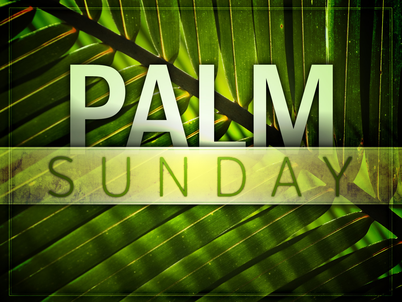palm sunday – whole gospel « wholedude - whole planet