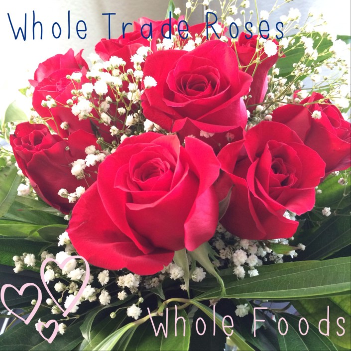 wholemurphy whole appreciation whole trade roses