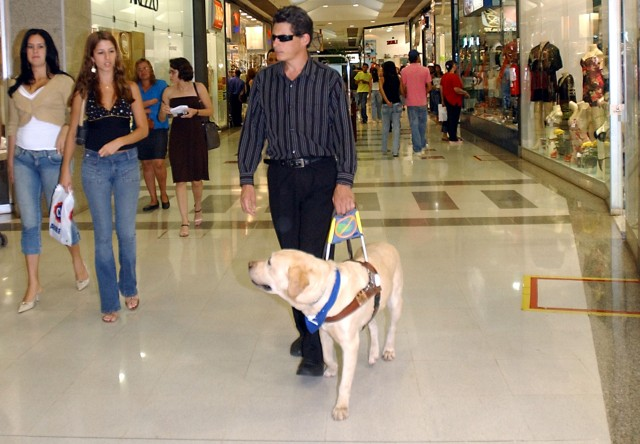 WHOLE MURPHY - WHOLE TEAM - WHOLE GUIDANCE: WHOLE MURPHY DISCOVERED THAT MAN IS BORN WITH VISUAL IMPAIRMENT FOR THE CHIEF ORGAN OF MAN'S PERFORMANCE HAS NO VISUAL CAPACITY. FOR THAT REASON, EVERY MAN NEEDS A GUIDE DOG.