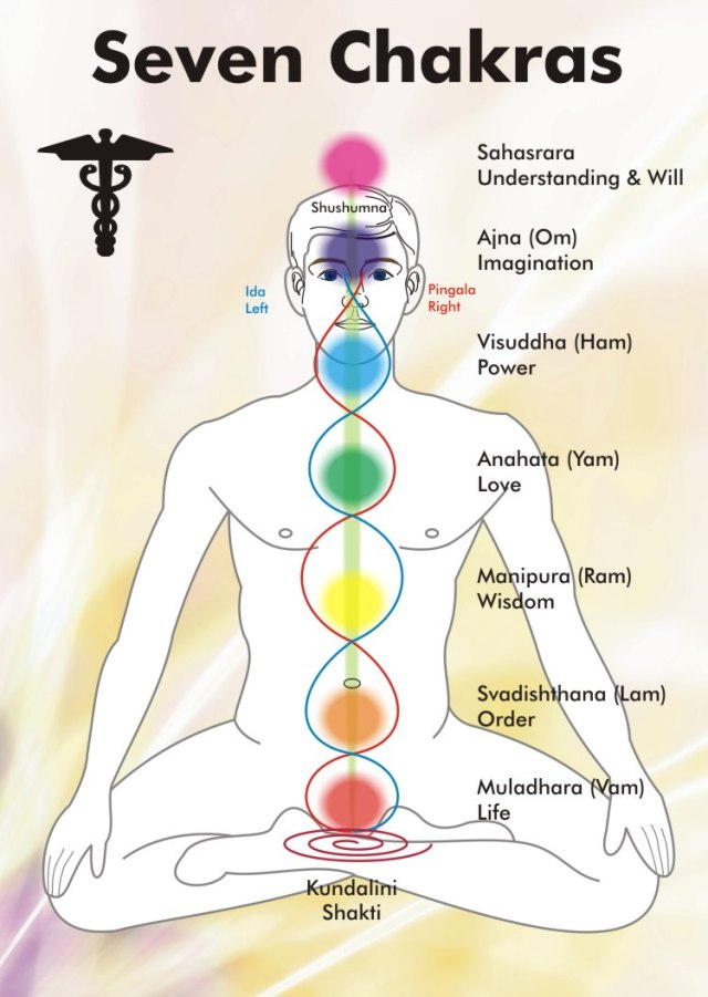 wholemurphy wholereport kundalini chakras