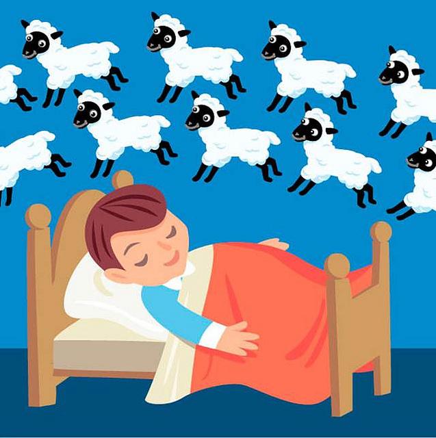 wholemurphy wholereport whole sleep count the sheep