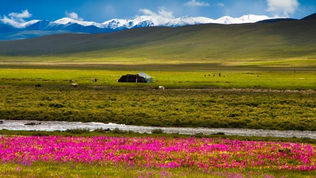 TIBET AWARENESS - SICHUAN - TIBET HIGHWAY - TIBET IS NEVER PART OF CHINA.